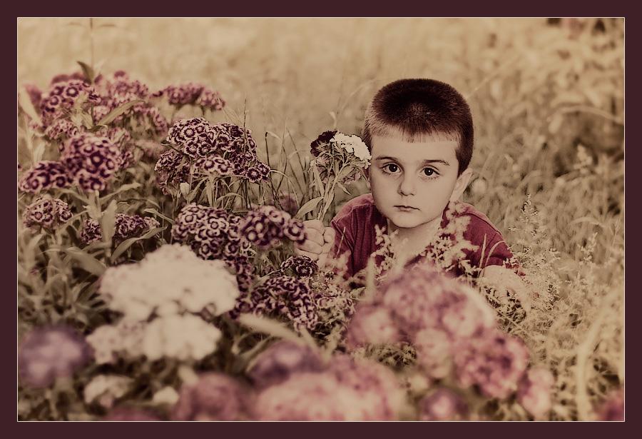 Цветя зя мама - Бори